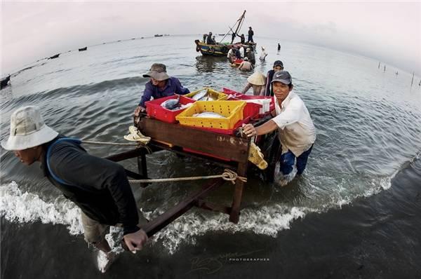 Cảng cá Long Hải là một trong những cảng lâu đời, lớn nhất và quan trọng nhất ở tỉnh Bà Rịa- Vũng Tàu. (Ảnh: Nguyễn Vũ Phước)