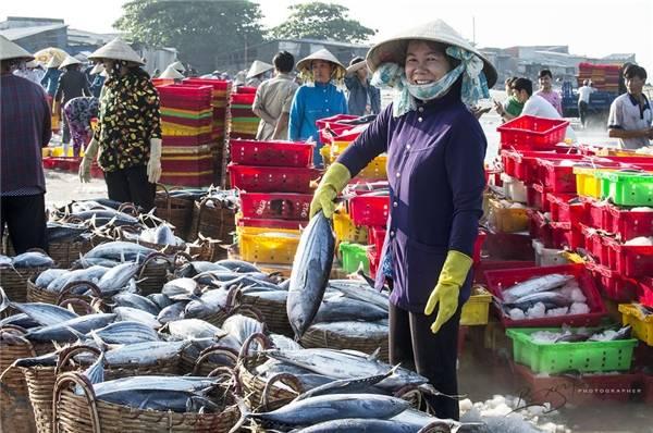 Nghề đánh bắt và phân phối hải sản đã tạo công ăn việc làm cho đa số cư dân ở Long Hải. (Ảnh: Nguyễn Vũ Phước)