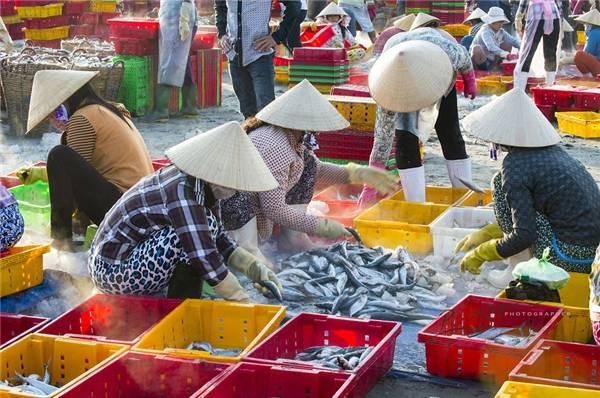 Những người phụ nữ làm công việc phân loại hải sản. (Ảnh: Nguyễn Vũ Phước)