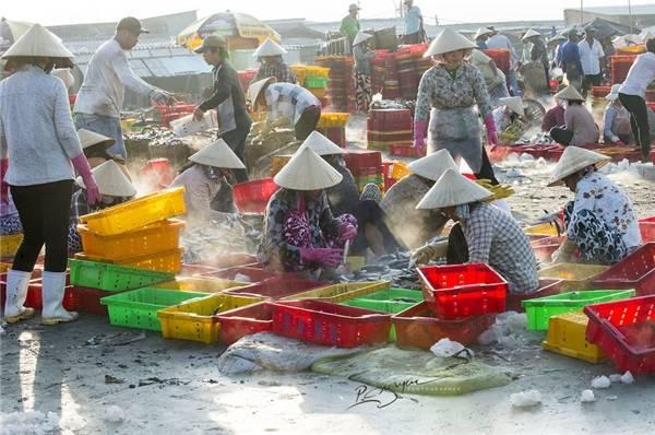 Mọi khâu đều được chuyên nghiệp hóa nên rất nhanh chóng và thuận lợi, đảm bảo nguồn hải sản tươi sống nhất đến với các điểm phân phối trước lúc mặt trời mọc. (Ảnh: Nguyễn Vũ Phước)