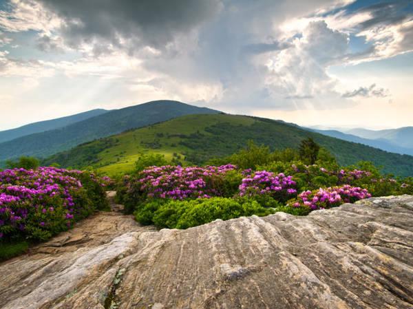 Con đường Appalachian Trail trên phần đất của Mỹ - Ảnh: travelchannel