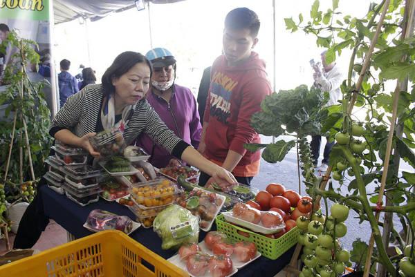 Du khách tìm hiểu về rau sạch Đà Lạt ở con đường nông sản Nguyễn Văn Cừ - Ảnh: Chính Thành
