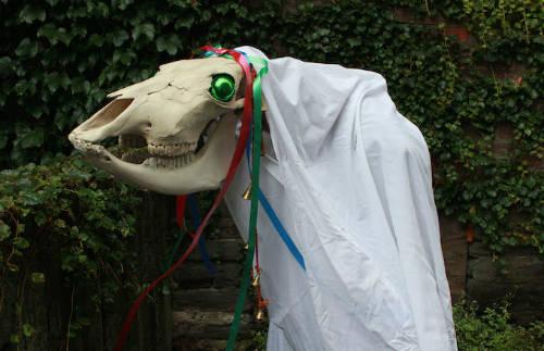 Mari Lwyd là nhân vật thường xuất hiện trên đường phố xứ Wales mỗi dịp Giáng sinh về. Một người dân sẽ được chọn để hóa trang thành nhân vật, cầm theo cây gậy có gắn hộp sọ ngựa cái và đi diễu hành khắp phố. Ảnh: Wikimedia Commons.