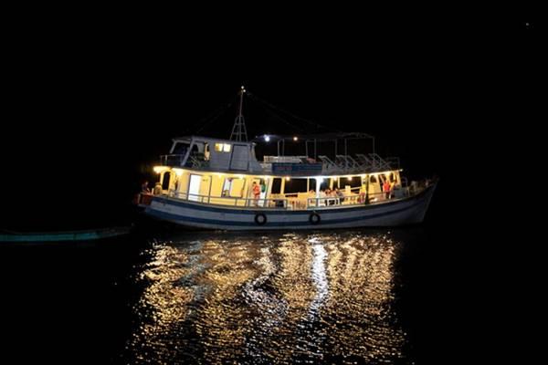 Thú vị hoạt động câu mực đêm tại Phú Quốc. Ảnh: ST