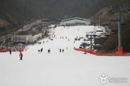 Khu trượt tuyết Elysian Gangchon mở cửa từ 9h đến 4h sáng hôm sau. Vé đi thang máy là 12.000 đến 70.000 won. Tiền thuê đồ trượt tuyết thay đổi theo thời điểm và tính riêng. Dù là người mới học trượt, chơi ở mức trung bình hay cấp chuyên nghiệp, bạn đều có thể trải nghiệm đường trượt dài 1 km ở đây. Ảnh: visitkorea.
