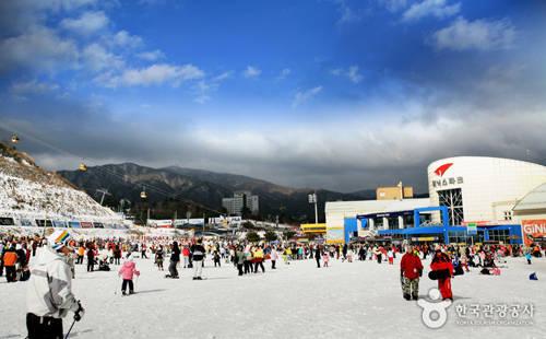 Công viên Pheonix mở cửa từ 8h30 đến 4h30 sáng hôm sau. Vé thang máy có giá khoảng 13.000 đến 85.000 won. Đây là một điểm đến hiện đại gồm khách sạn 5 sao, nhiều tòa nhà cao tầng, triền núi trượt tuyết và các khu vui chơi trên đỉnh núi. Ảnh: visitkorea.