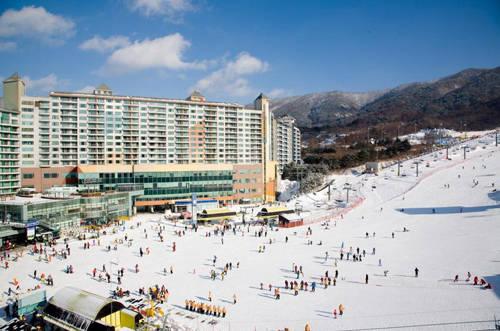 Công viên tuyết Wellihilli mở cửa từ 8h30 đến 4h sáng hôm sau. Giá vé đi thang máy vào khoảng 14.000 đến 85.000 won. Công viên này có sức chứa lên tới 20.000 người trượt mỗi giờ với hệ thống trang thiết bị tự động hiện đại. Ảnh: tripstokorea.