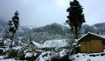Tuyết rơi trắng xóa tại Phó Bảng. Ảnh: Haiauphoto