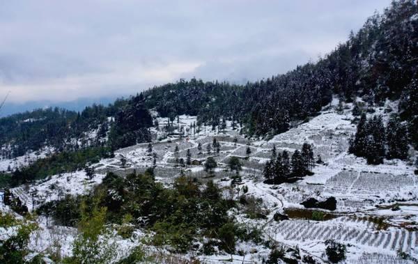 Nhiều năm liền, Sapa là một trong những địa danh hiếm hoi ở Việt Nam mà du khách có thể được tận hưởng trọn vẹn một mùa đông hàn đới với tuyết phủ trắng núi đồi. Ảnh:baotinnhanh.vn