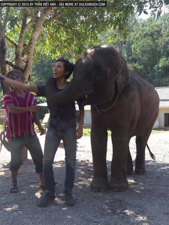 voi-massage-du-khach-o-chiang-mai-ivivu-9