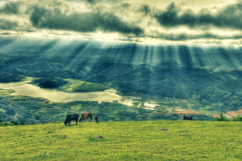 Từ trên đỉnh núi Langbiang, du khách có thể thỏa tầm mắt ngắm nhìn gần như toàn bộ Đà Lạt mộng mơ. Ảnh: ST