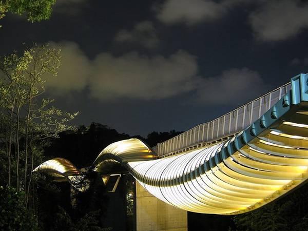 """Cầu Henderson Wave nằm trên một con phố nhỏ và khá vắng vẻ có tên Telok Blangah, Singapore. Đây là một trong những cây cầu đi bộ lạ nhất thế giới với những """"xương xườn"""" thép lượn cong từ trên xuống dưới tạo thành """"sóng"""" bao phủ lấy thân cầu."""