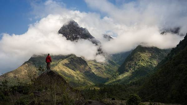 Tại Việt Nam, König đã ghi lại khung cảnh hùng vĩ trên đường chinh phục đỉnh Fansipan - nóc nhà Đông Dương, với rừng xanh, núi cao và mây trắng bao bọc.