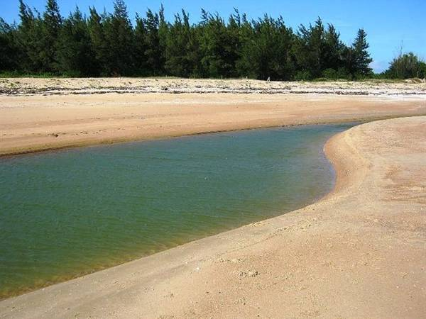 Bãi biển Suối Ồ rất thích hợp cho các hoạt động vui chơi, cắm trại qua đêm trên biển. Ảnh: ST