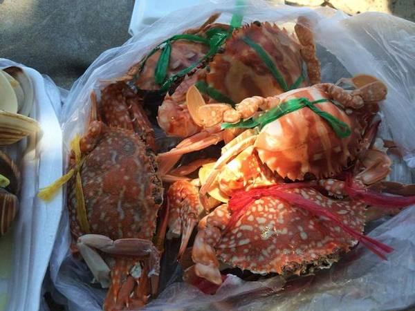 Sau khi mua hải sản, bạn có thể nhờ người dân địa phương ở đây chế biến giúp. Ảnh: ST