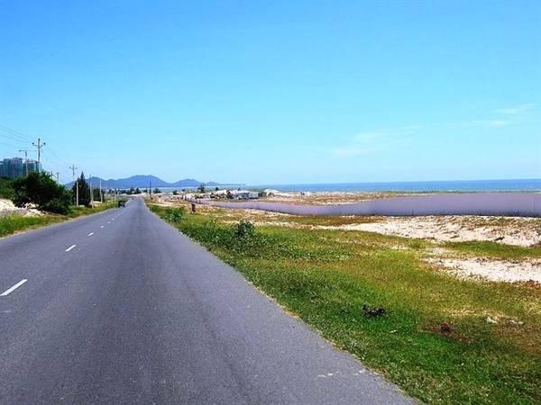 Con đường tuyệt đẹp dẫn ra biển Suối Ồ. Ảnh: ST