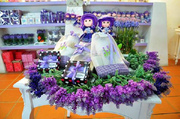 Không cần phải sang tận trời Âu xa xôi, bạn có thể chiêm ngưỡng cánh đồng hoa oải hương ngay trong vùng Đông Nam Á. Ảnh: Ngoisao.net