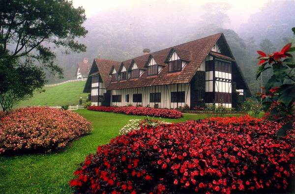Đến với những đồi chè ở cao nguyên Cameron, du khách sẽ có cảm giác lạc vào một vùng đồng quê ở nước Anh. Những ngôi nhà với kiến trúc kiểu Anh xinh đẹp là nơi nghỉ chân cho du khách khi đến đây tham quan và nghỉ dưỡng. Ảnh:kuantan-hotels.com