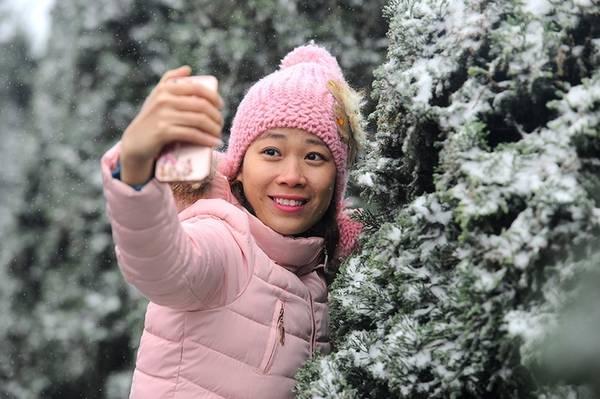 Những hàng thông phủ đầy tuyết trắng trở thành bối cảnh chụp lý tưởng để có bộ ảnh như ở trời Âu.