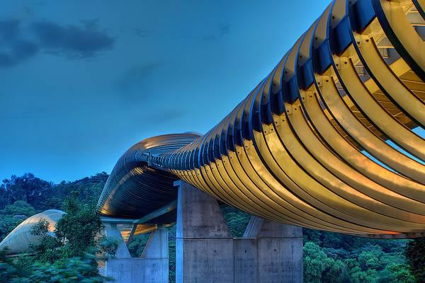 Henderson Waves hiện đang giữ kỷ lục là cầu đi bộ cao nhất Singapore với chiều cao 36m cách mặt đường và được đặt tại phía Tây Singgapore. Với độ cong đẹp mắt, nhìn từ xa Henderson Waves trông như một con rắn khổng lồ. Ảnh: Jonathan Danker