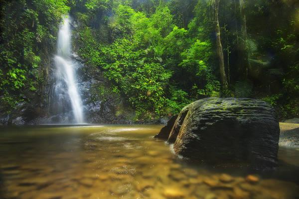 Được mệnh danh là hòn đảo ngọc với thiên nhiên hội tụ đủ những hình thái đặc sắc. Langkawi là nơi khách du lịch có thể trải nghiệm những không gian khác nhau, từ lên núi ngắm cảnh tới vào rừng ngập mặn và lặn biển. Chính sự đa dạng của nhiều hệ sinh thái tạo nên khu du lịch tổng hợp nhưng vẫn có nét đặc sắc riêng. Ảnh: M. AL-LINGAWI