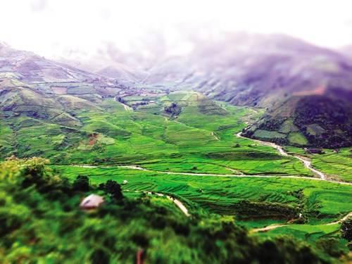 Từ đèo Khau Phạ nhìn xuống bản Lìm Mông, Lìm Thái mờ sương