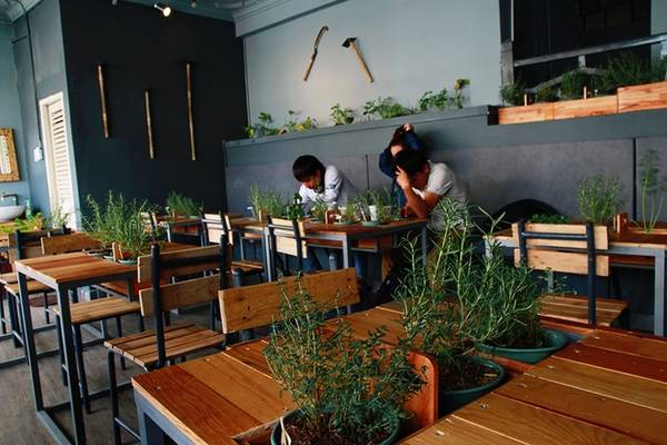 Bàn ghế đều được làm từ gỗ với thiết kế tinh tế khiến không gian trở nên sang trọng hơn. Ở mỗi chiếc bàn ấy đều được bày trí những chậu cây nhỏ xinh như: rau cải, rau húng, bạc hà...