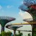 4-trai-nghiem-du-xuan-danh-cho-cap-doi-tai-Singapore-ivivu-2
