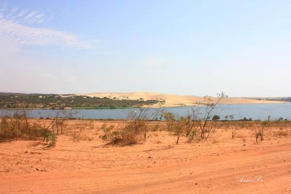 Thỉnh thoảng, có những mảng xanh hiếm hoi hiện lên trền nền đất đỏ, giống như ốc đảo giữa sa mạc.