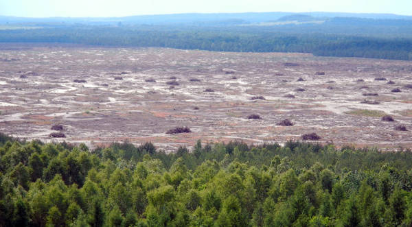 Một góc sa mạc Bledow - Ảnh: wiki