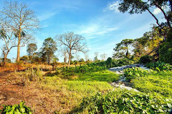 Thác Draysap với hai màu hòa quyện. Xanh của cỏ cây mùa xuân và vàng đỏ của mùa khô Tây nguyên
