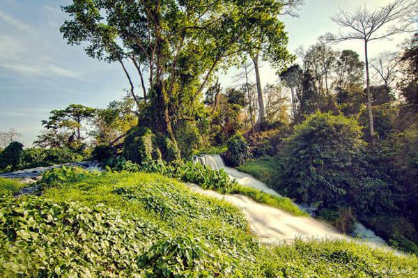 Giữa mùa khô, vẫn có cây cối vẫn đâm chồi nảy lộc ở thác Draysap