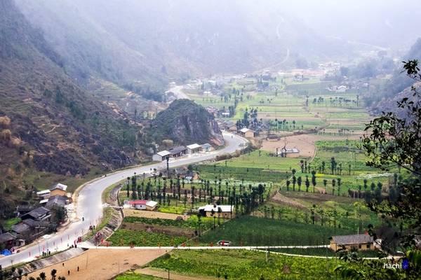 Thung lũng Lũng Cẩm yên bình với những nương ruộng sắc màu hoa cải, những hàng cây sa mộc thẳng tắp tô điểm giữa bốn bề núi đá.