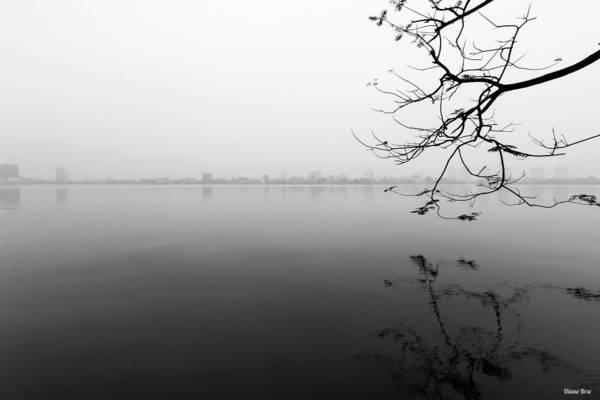 Sương mù bảng lảng ở Hồ Tây vào mùa đông.