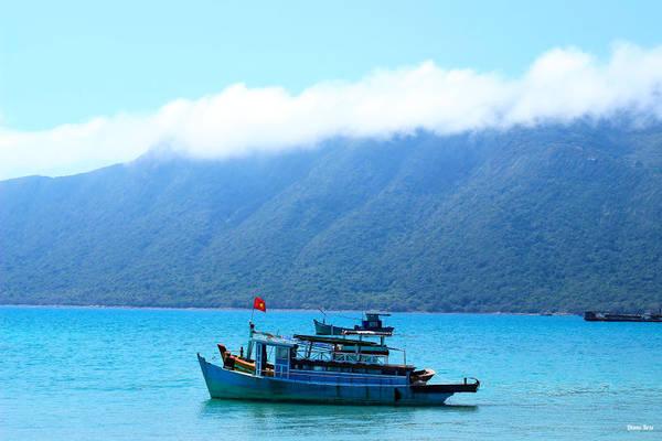 Vẻ đẹp bình dị của Côn Đảo.