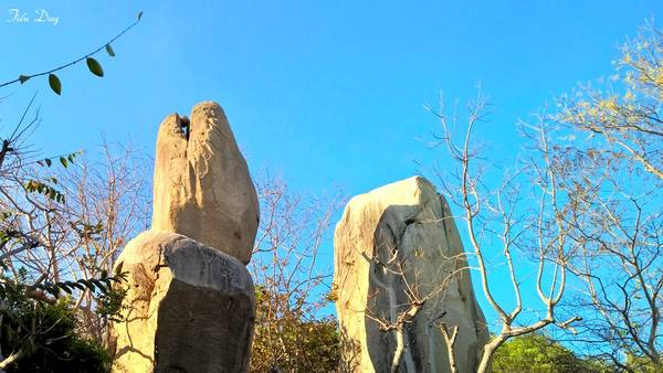 Lần bên phải Thiền viện lên núi Kỳ Vân, ở đây có nhiều tảng đá tạo những hình thù lạ mắt, như tảng đá hình đầu rắn, cá heo, voi, rùa, chim phượng hoàng...  Ảnh: Tiểu Duy