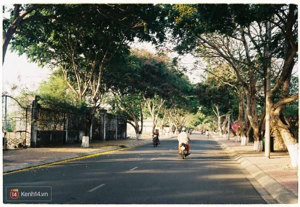 Description: Con đường dẫn vào thị trấn. Ảnh: Kenh14