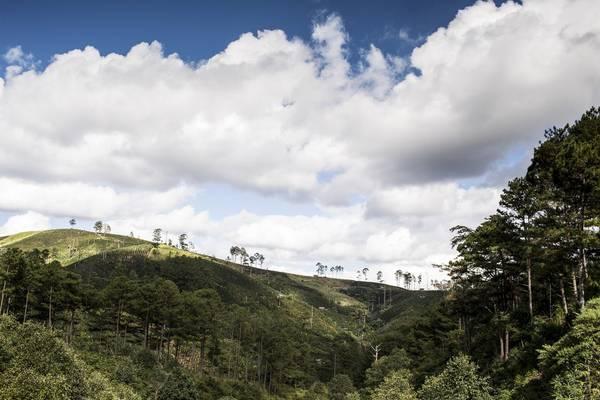 Thành phố Đà Lạt là điểm nghỉ dưỡng được nhiều du khách Việt Nam và quốc tế yêu thích. Tuy nhiên, nhiếp ảnh gia David Hagerman muốn độc giả của tờ New York Times có cơ hội khám phá miền núi rừng cách không xa trung tâm thành phố.