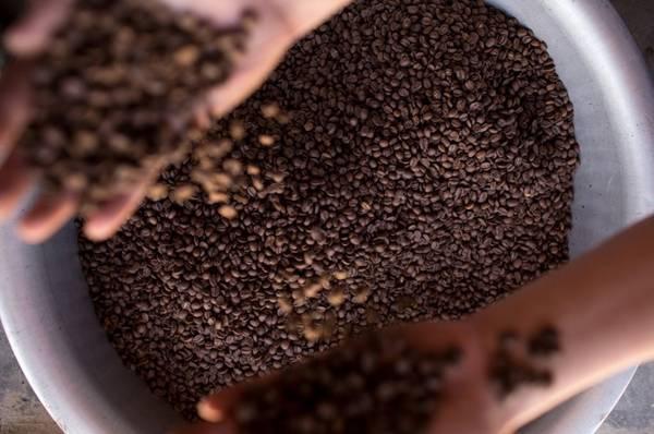 Màu nâu đậm đà, hấp dẫn của hạt cà phê.