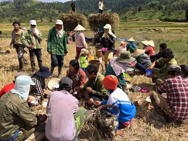 Description: Người nông dân vui vẻ tụ tập nghỉ ngơi và ăn trưa dưới chân núi.
