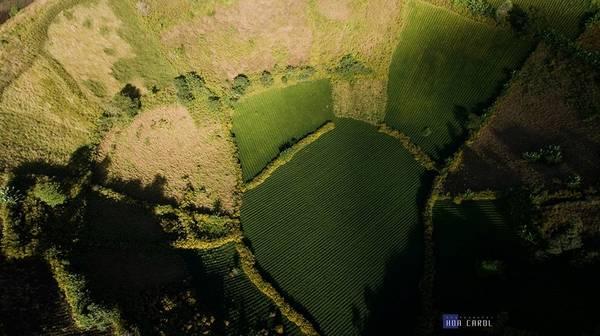 Description: Dấu tích nham thạch để lại nơi đây một vùng đất đỏ bazan màu mỡ. Người dân bản địa thường trồng trọt các loại cây như ngô, khoai, bí đỏ, dong riềng… làm nguồn lương thực.