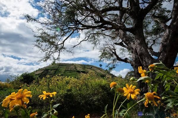 Description: Cảnh sắc thiên nhiên quanh khu vực núi lửa rất tự nhiên, đa dạng.