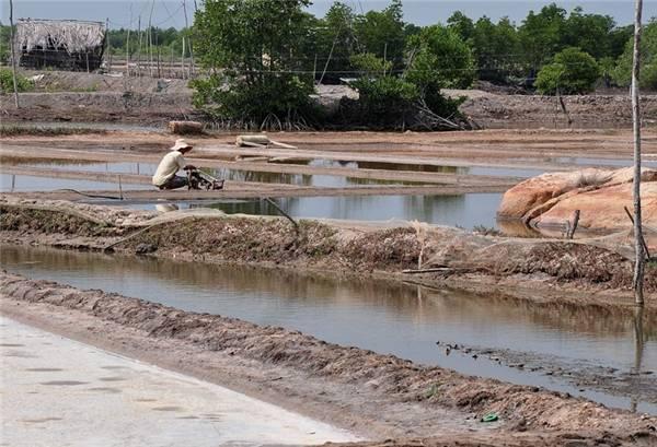 Tuy những ruộng muối ở đây không quy mô như miền Trung nhưng sẽ là một điểm nhấn đáng chú ý nếu bạn ghé Long Sơn tham quan. (Ảnh: Internet)