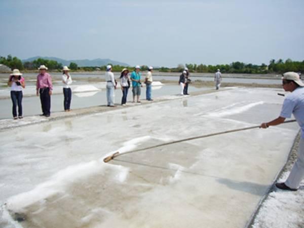 Bạn có thể trải nghiệm nghề làm muối như diêm dân ở Long Sơn. (Ảnh: Internet)
