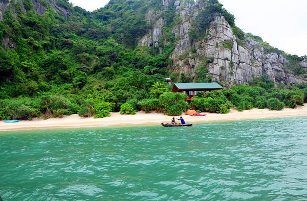 Ấn tượng đầu tiên khi đến đảo Mắt Rồng chính là không gian xanh mướt ở đây. Ảnh: baoquangninh