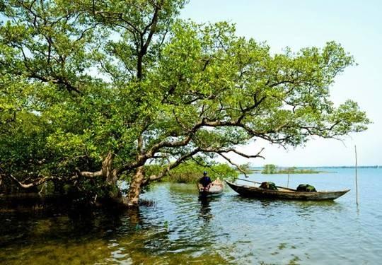 Người dân Tam Hải sống chủ yếu bằng nghề giăng câu, thả lưới. Ảnh: Hải Hoàng
