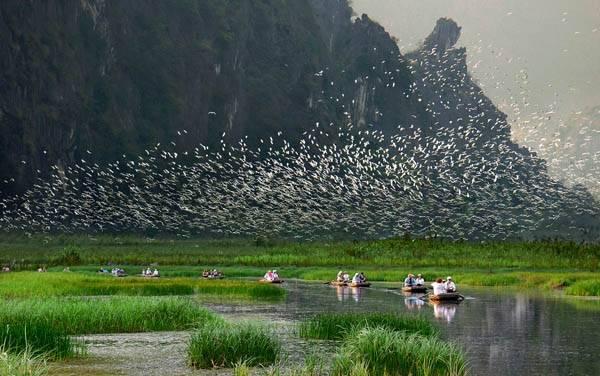 Khu bảo tồn thiên nhiên ngập nước Vân Long. Ảnh: Wiki