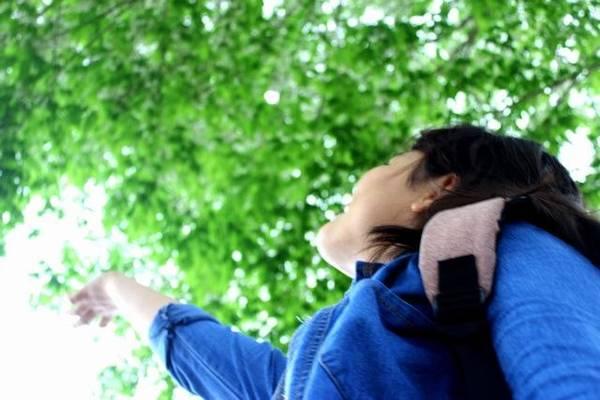 Cảnh đẹp đến xao xuyến lòng người - Ảnh: Nguyễn Phương Huệ