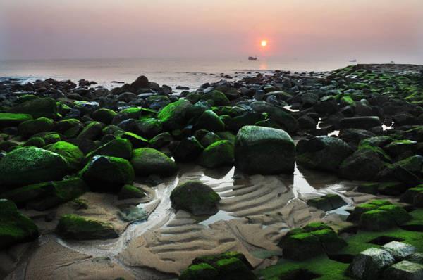 Description: Bình minh huyền ảo trên bờ kè xanh ngắt màu rêu - Ảnh: Dương Thanh Xuân