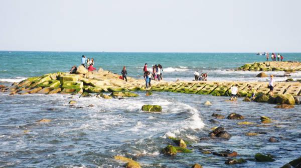Description: Những đoạn kè chống xói lở bờ biển bám đầy rêu xanh - Ảnh: Dương Thanh Xuân